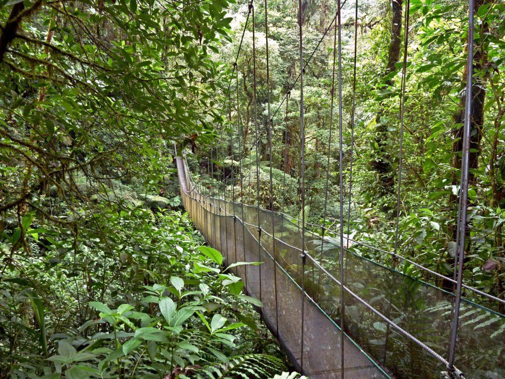 hanging bridge la fortuna waterfall
