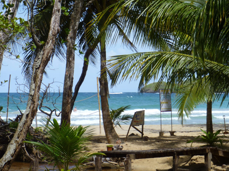 Red Frog Beach Bocas del Toro