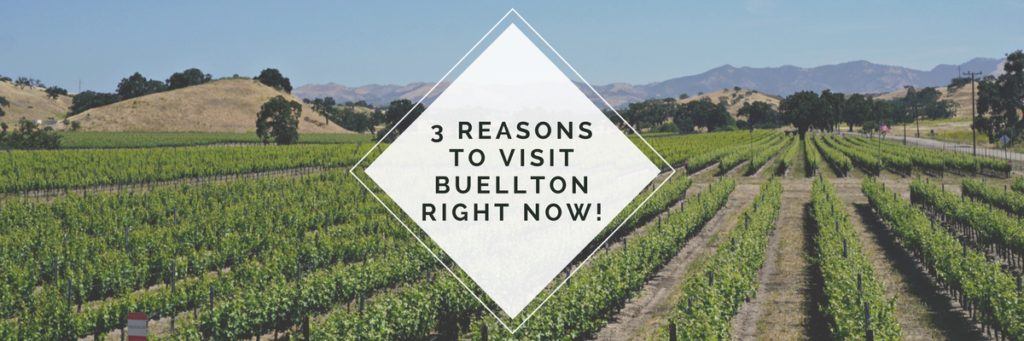 reasons to visit buellton feature