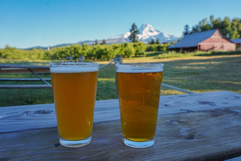 beers with a view at solera brewing company