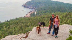 Bar Harbor pet friendly acadia national park