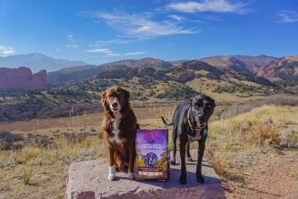 Untamed By 4health Dog Food Product Review Follow Your Detour