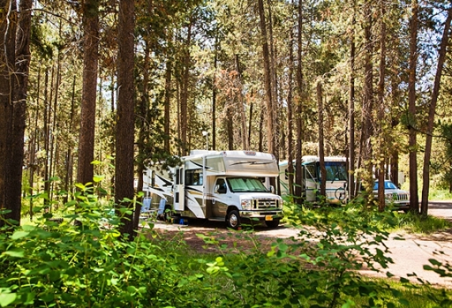 RV motorhome parked among trees in campground