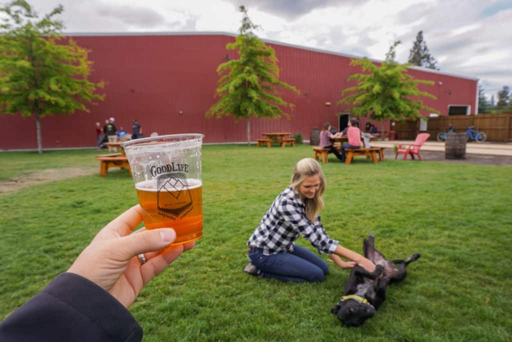 Dog getting a belly rub in the lawn at a Bend Oregon brewery