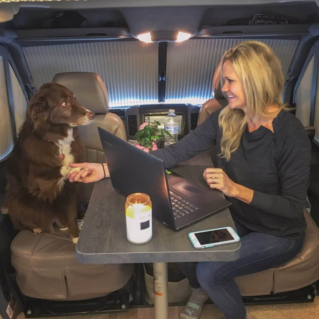 Woman and dog working with laptop shaking hands