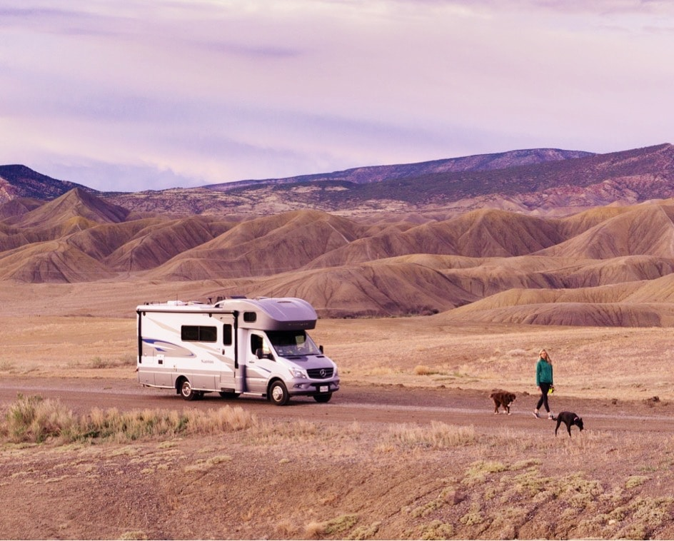 woman and dogs walking passed RV motorhome in open space