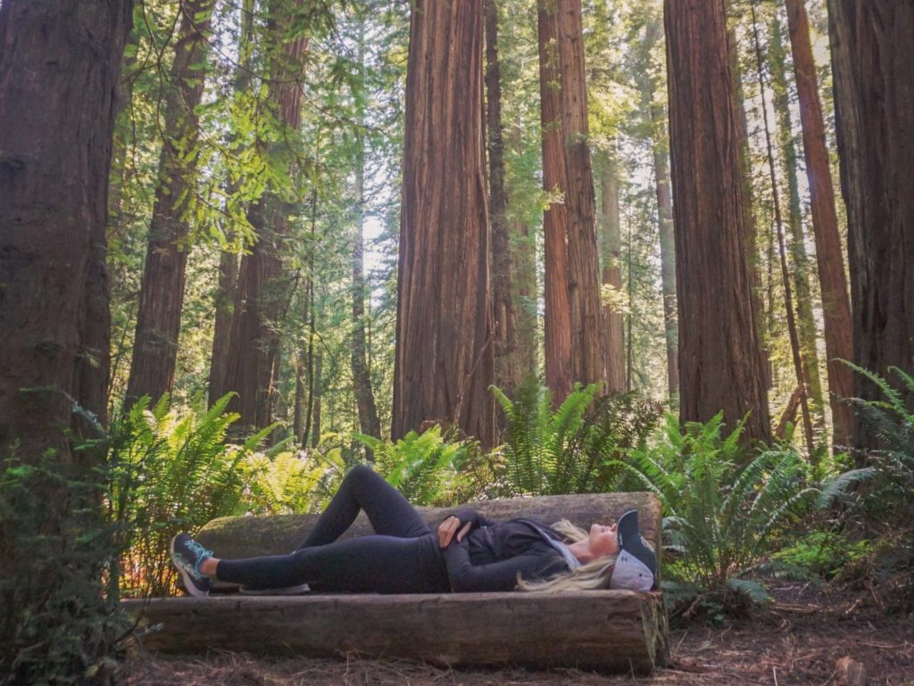 woman laying on bench in redwood national park looking up at trees