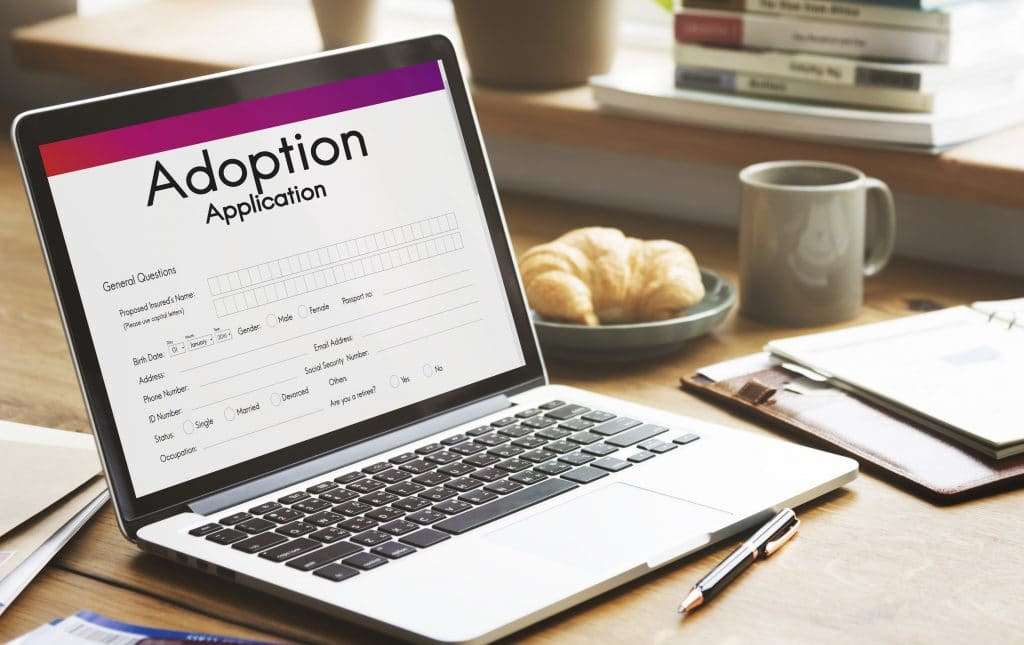Computer with adoption application open